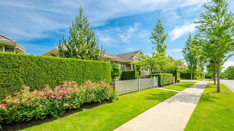16 Inexpensive Landscaping Tips For HOAs On A Budget